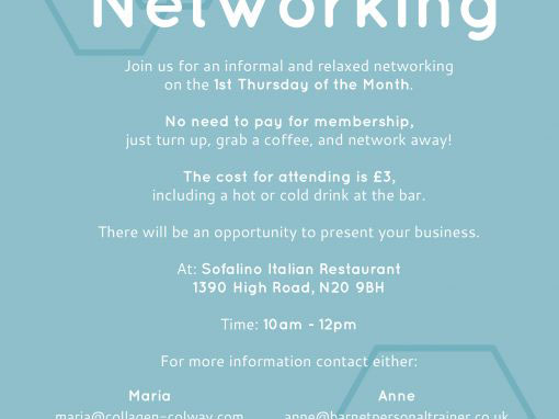 Whetstone Networking Flyer